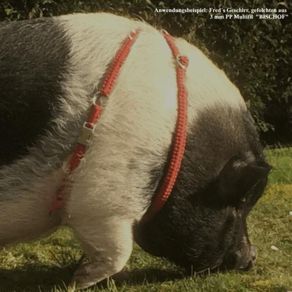 PP-Multifil Minischweine-Geschirr